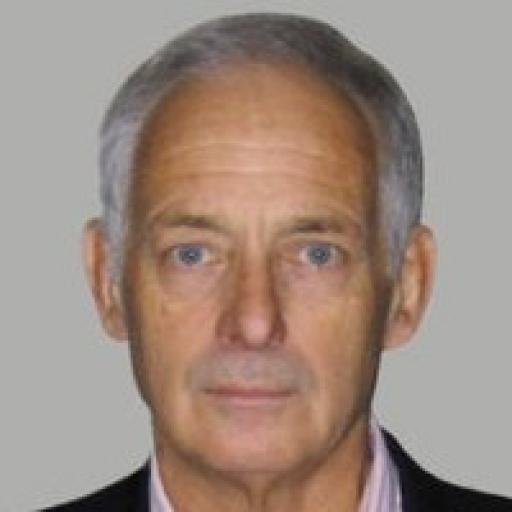 Daniel Prins - Consultant